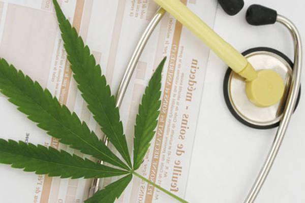 cannabis therapeutique quebec