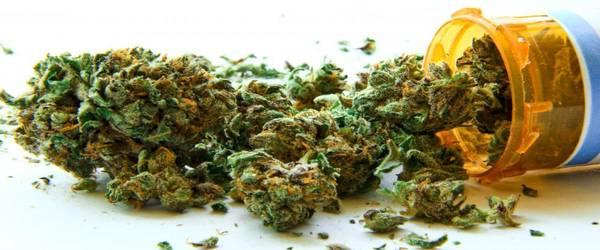 autorisation cannabis thérapeutique france