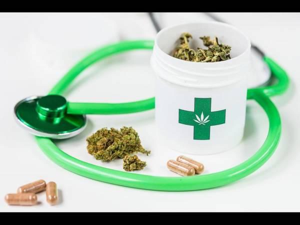 cannabis thérapeutique en france 2019