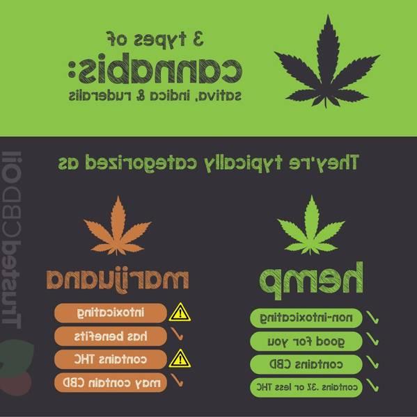 france inter cannabis therapeutique