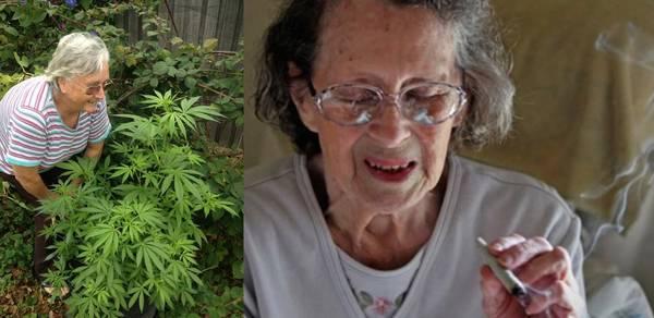 cannabis effet therapeutique