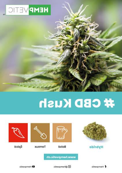 cannabis thérapeutique thé
