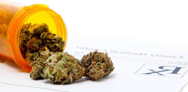 cannabis thérapeutique autorisé en france