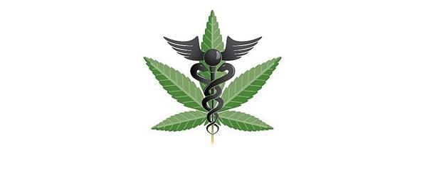 cannabis thérapeutique france 2