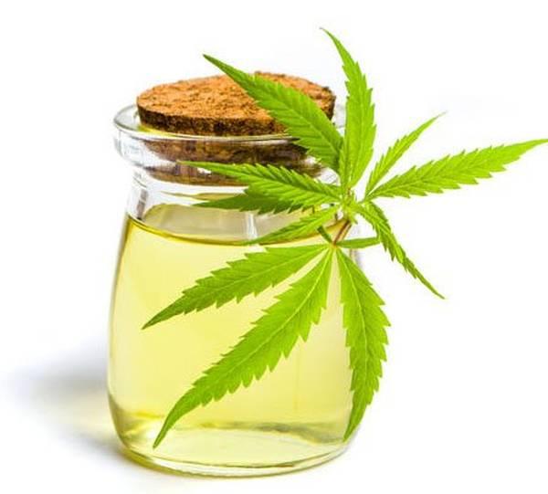 marché du cannabis thérapeutique en france