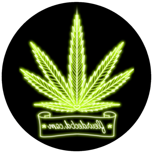 cannabis therapeutique creuse